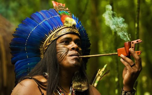 indigenous peoples of the americas 2 This unit is intended to focus on two essential questions regarding indigenous people (there are two other essential questions the world trek team will be addressing, though there are no lessons available relating to them.